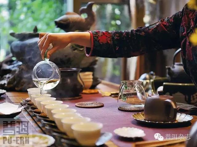 野茶的传承