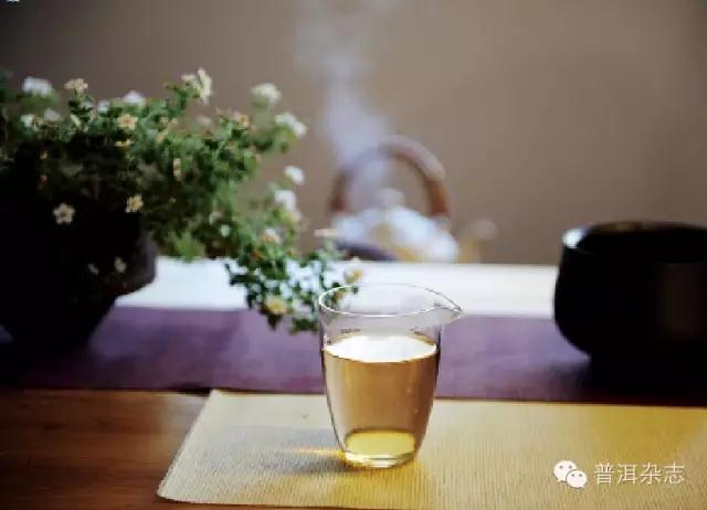 普洱茶的叶底之美
