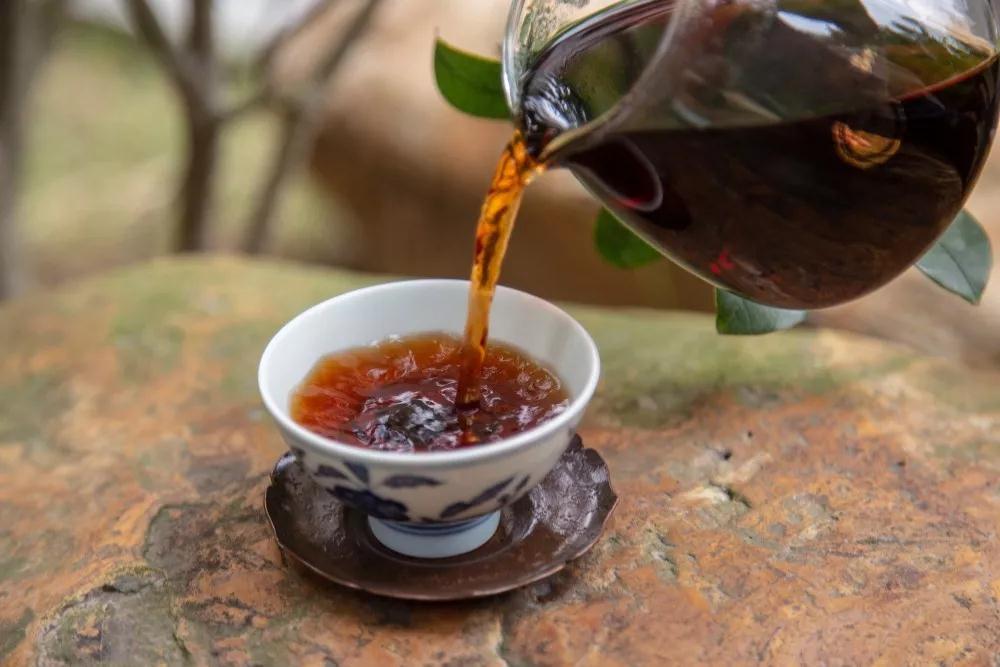 普洱茶的陈韵